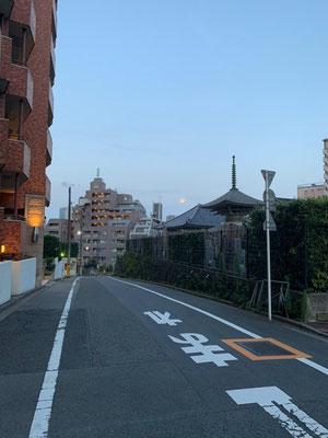 かねつなしほ/2020.08.02/18:30/新宿