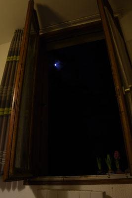 marmotte/2021.02.03 05:26/フランス、グルノーブル、自宅