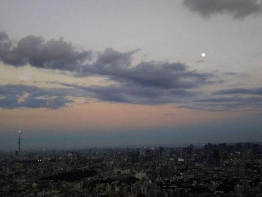 りえ&ゆうき/2020.08.01 18:45/東京、池袋サンシャイン60展望台