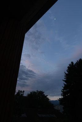 marmotte/2020.08.11 06:39/フランス、グルノーブル、自宅の窓から