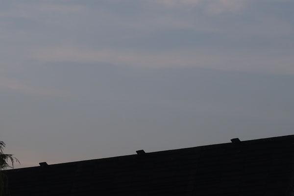 marmotte/2021.03.10 07:26/フランス、サンマルタンデール、キャンパス