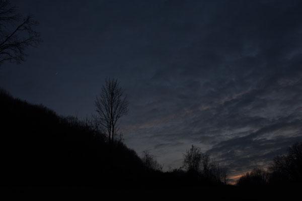 marmotte/2021.01.16 17:26/フランス、サンマルタンデール、丘