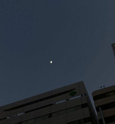 ふうちゃん/2021.01.21 17:10/東京都内