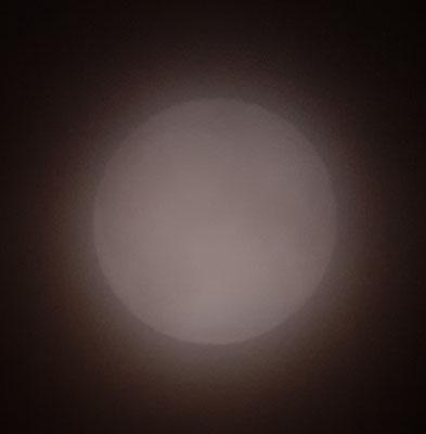 marmotte/2020.10.01 23:34/フランス、グルノーブル、自宅の窓から