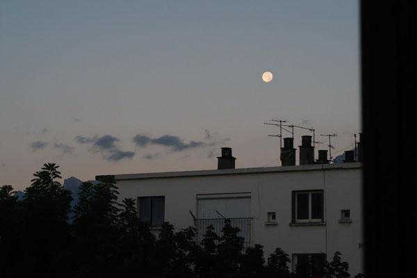 marmotte/2020.08.05 06:38/フランス、グルノーブル、自宅の窓から