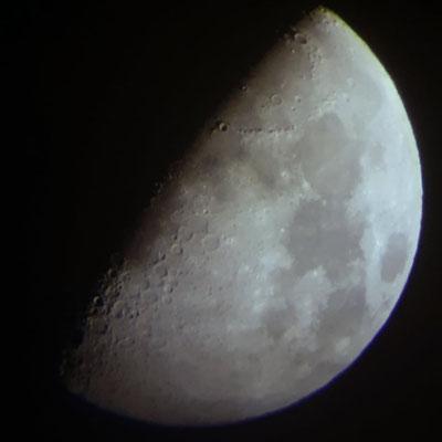 marmotte/2021.06.18 23:48/フランス、グルノーブル