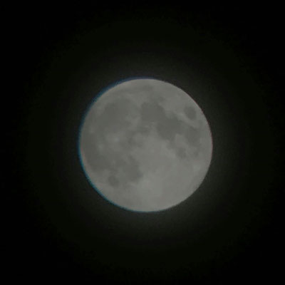 秋山直子/2020.06.05 22:00頃/神奈川県横浜市中区