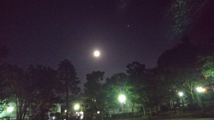 りえ&ゆうき/2020.06.10 00:22/東京都、文京区立大塚公園