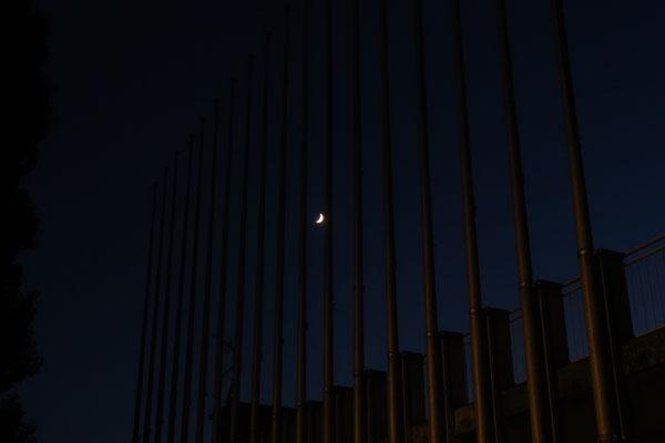 marmotte/2020.06.25 22:23/フランス、グルノーブル、近所の公園沿いの通り/月齢4.75