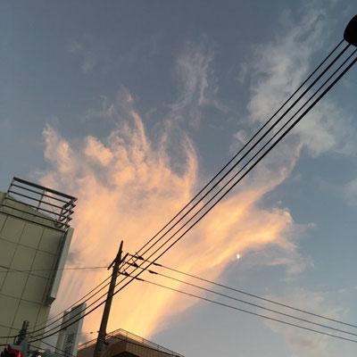 徳永 梓/2020.08.26 18:21/東京都渋谷区