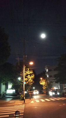 りえ&ゆうき/2021.05.25 20:31/東京都、新大塚