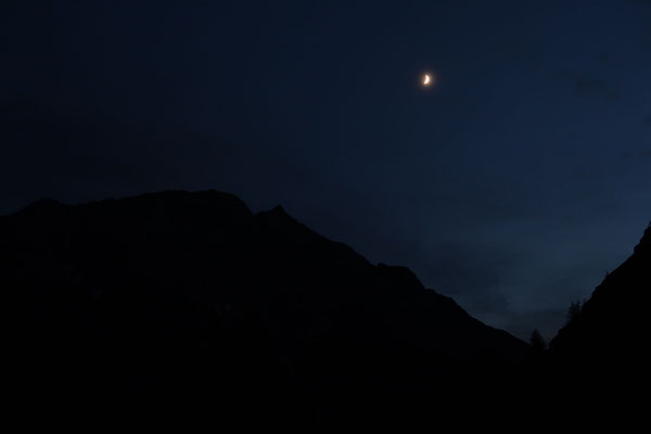 marmotte/2020.07.25 21:48/フランス、エクラン山脈、プレドゥラショーメット小屋の近く