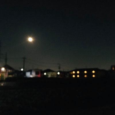 徳永 梓/2020.10.01 18:53/東京都練馬区