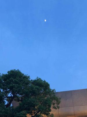 yororon/2020.06.29 19:04/東京都台東区上野公園