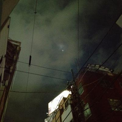 pinkuma/2021.05.22 20:31/横浜市桜木町