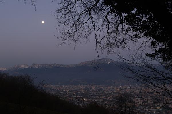 marmotte/2021.03.02 06:57/フランス、ロマージュ、ポワザ