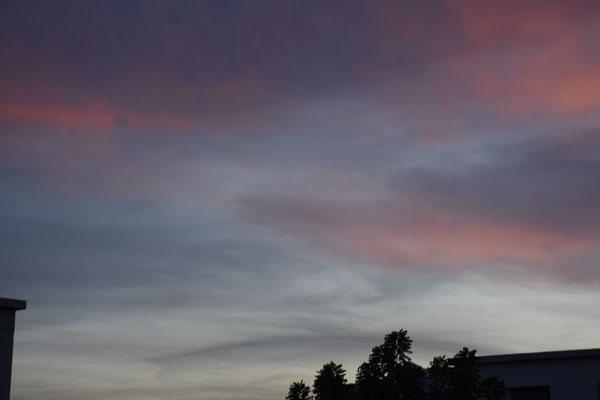 marmotte/2020.10.19 18:53/フランス、グルノーブル、自宅の窓から