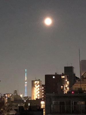 yororon/2020.08.05 21:21/東京都豊島区