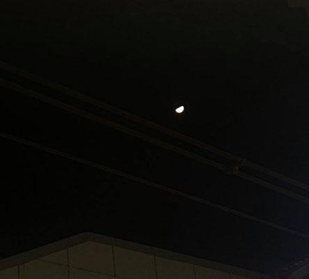 ふうちゃん/2021.02.20 22:24/東京都内