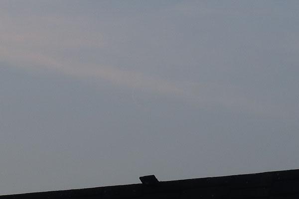 marmotte/2021.03.10 07:27/フランス、サンマルタンデール、キャンパス