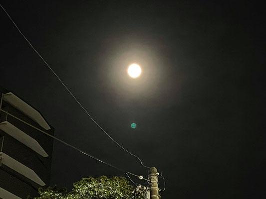 秋山直子/2021.05.25 23:10頃/神奈川県横浜市中区