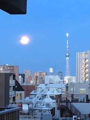 yororon/2020.05.07/東京都