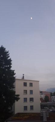 marmotte/2021.06.18 21:29/フランス、グルノーブル
