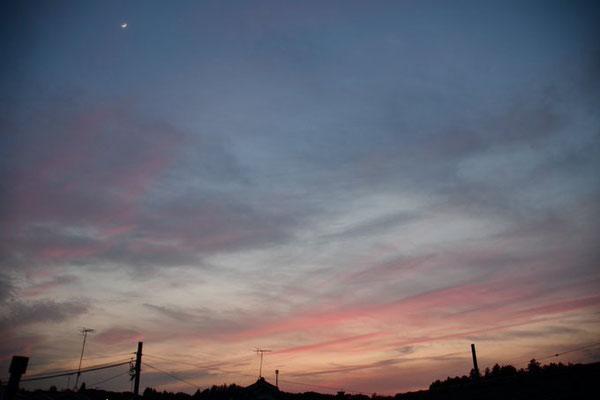 Yoko/2020.05.27 夕刻/横浜市青葉区、自宅窓から