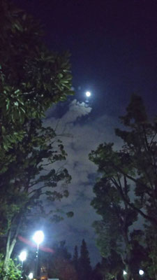 りえ&ゆうき/2020.10.06 23:44/東京、教育の森公園