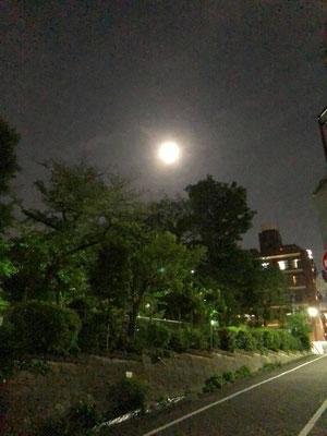 yororon/2021.05.25/東京都内