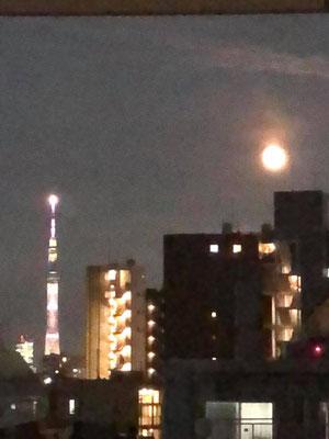 yororon/2020.08.03 19:27/東京都豊島区