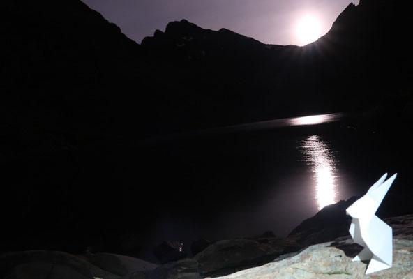 marmotte/2020.07.04 23:21/フランス、ベルドンヌ、クロゼ湖