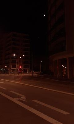 marmotte/2021.01.08 06:07/フランス、グルノーブル、近所の道路