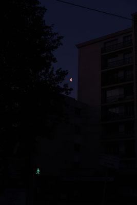 marmotte/2021.05.03 06:00頃/フランス、グルノーブル