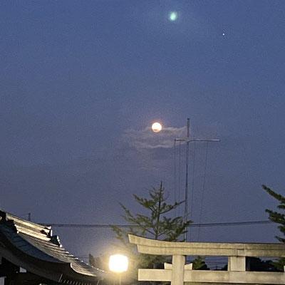 わか/2020.08.02 19:00頃/東京都 神社