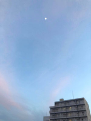 yororon/2020.05.30 18:53/東京都豊島区