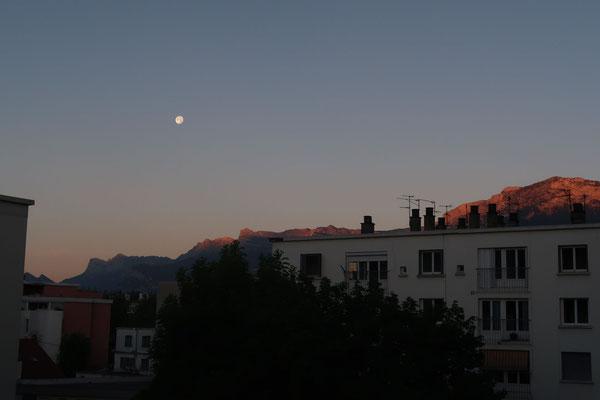 marmotte/2020.07.07 06:11/フランス、グルノーブル、自宅の窓から