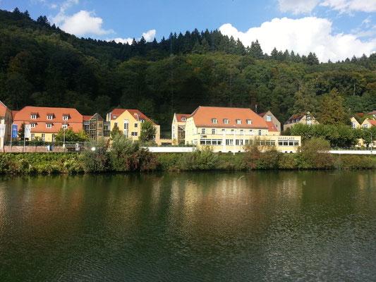 ... Schifffahrt nach Neckargemünd