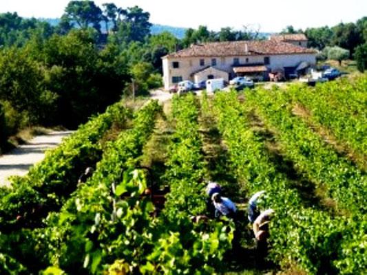 Vinkooperativet Cabrery Longo maï