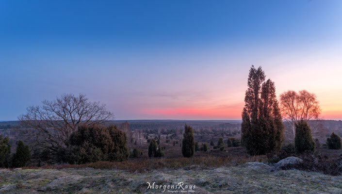Vor Sonnenaufgang auf dem Wilseder Berg