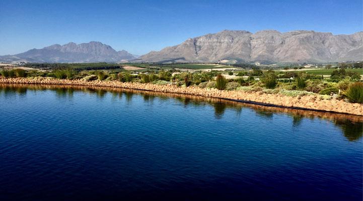 Clovelli Weingut in Stellenbosch