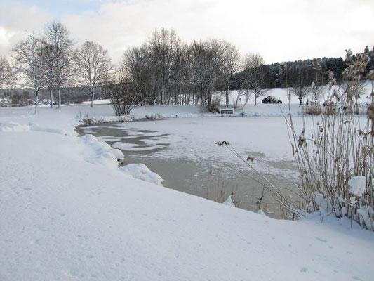 Hörschweiler See