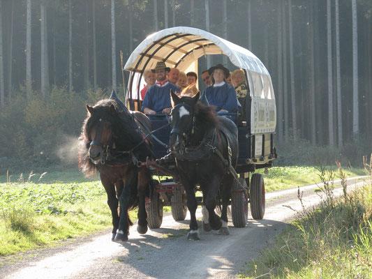 Pferdekutschfahrt oberhalb des Wellnesswaldes