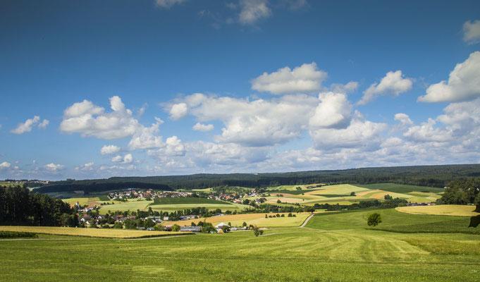 Vom Schellenberg gesehen