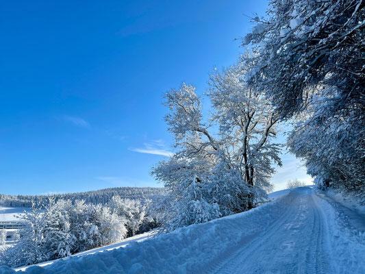Wintermorgen zum St. Hilarius-Friedhof