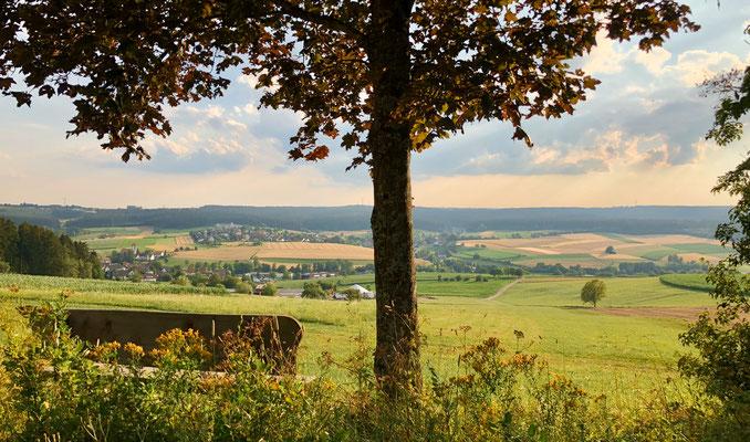 Blick auf Hörschweiler
