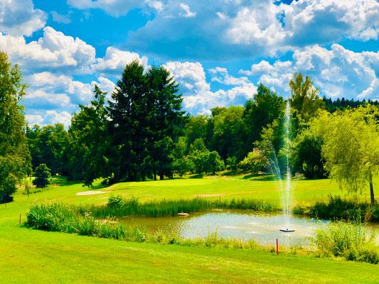 Der See vor Grün 1
