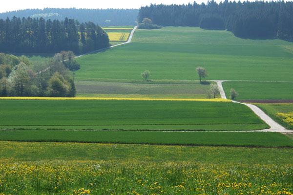 Tal-Blick zum Hörschweiler See