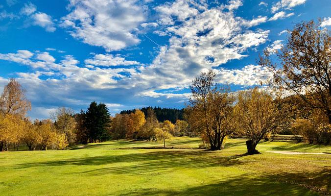 Herbstlicher Blick auf Grün 1