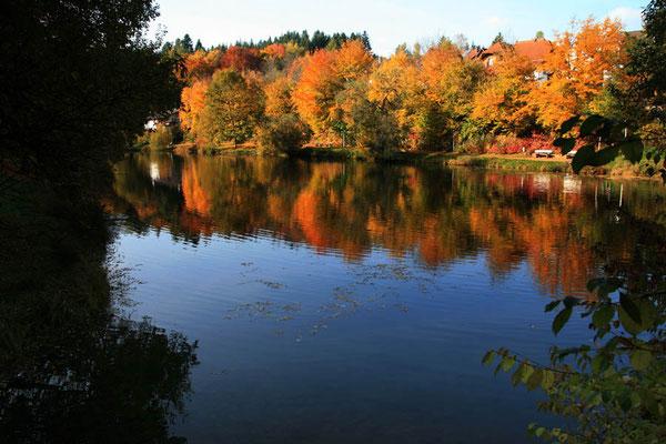 Breitenbach See in Lützenhardt
